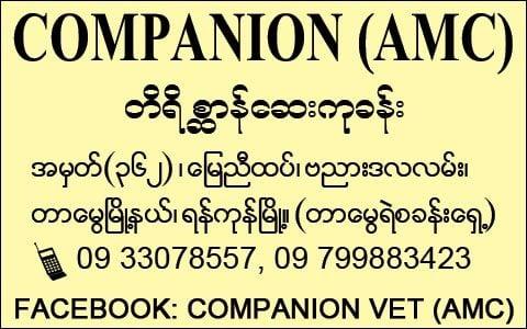 Companion_-Veterinary-Clinics_4475.jpg
