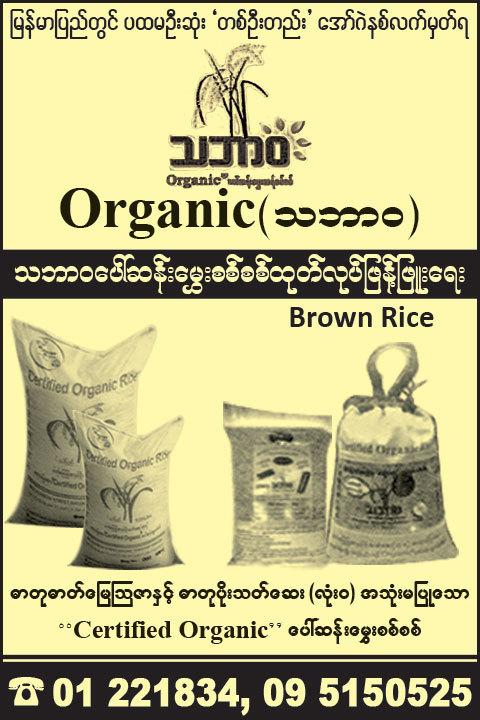 Organic_Rice-Merchants_(A)_3745.jpg