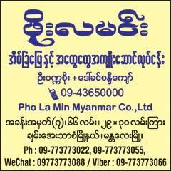 Phoe-La-Minn(Real-Estate-&-Agent)_0317.jpg
