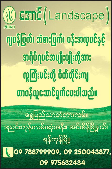 Aung_Landscaping_(A)_566.jpg