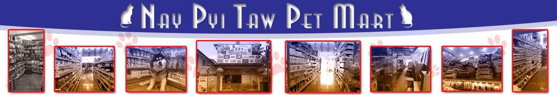 Nay Pyi Taw Pet Mart
