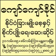 Kyaw-Kyaw-Naing(Agricultural-Chemical-Dealers)_0270.jpg