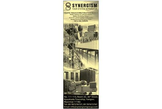 Synergism-Co-Ltd_Electrical-Good-Sales_(A)_115 copy.jpg