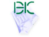 Bright Hands Construction Co., Ltd.Construction Services