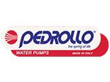 PedrolloPump Repair