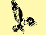 Golden Eagle Motor ServiceCar Workshops