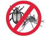 GITE Pest Control Professional ServiceInsecticides