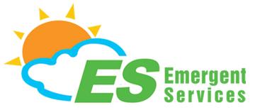 Emergent Services Co., Ltd.(Computer Software Dealers)
