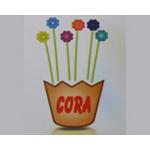 CoraIce Cream