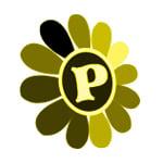 Pann War Nwe(Flowers & Florists)