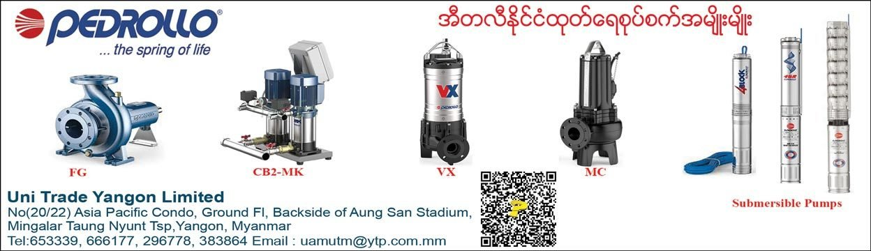 Pedrollo_Pump-&-Accessories_(A)_1312.jpg