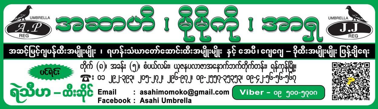 Asahi_Umbrellas_(B)_505.jpg