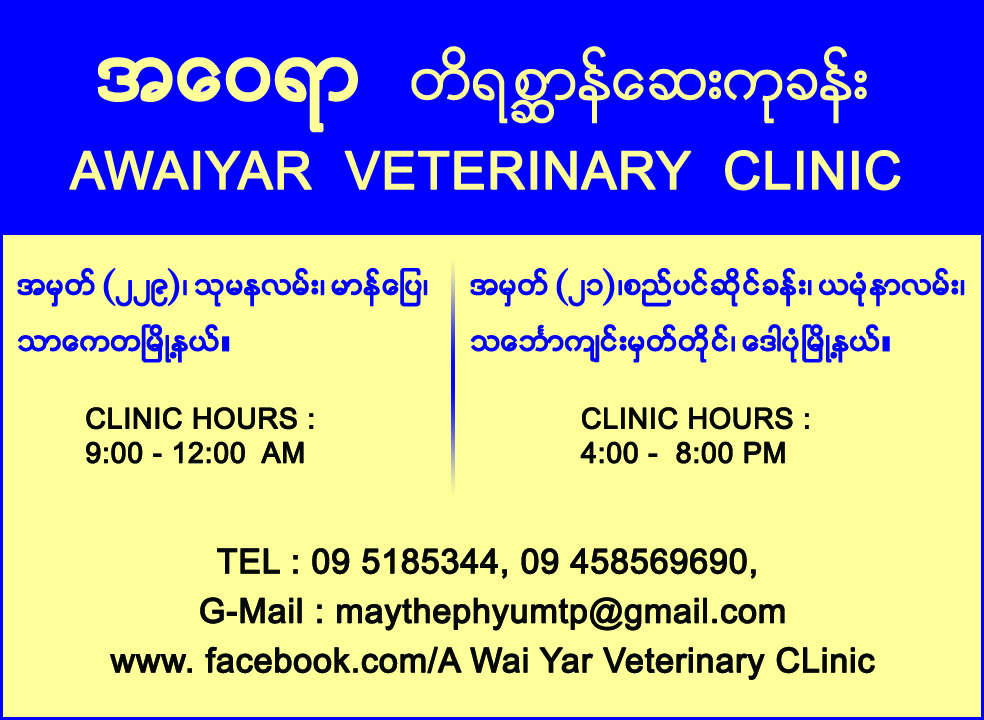 Awaiyar_Veterinary Clinics_(A)_1117 copy.jpg