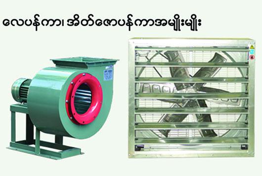 Kyin Lone Myanmar_Photo4.jpg