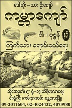 Kabar-Kyaw(Fish-Markets)_0029.jpg