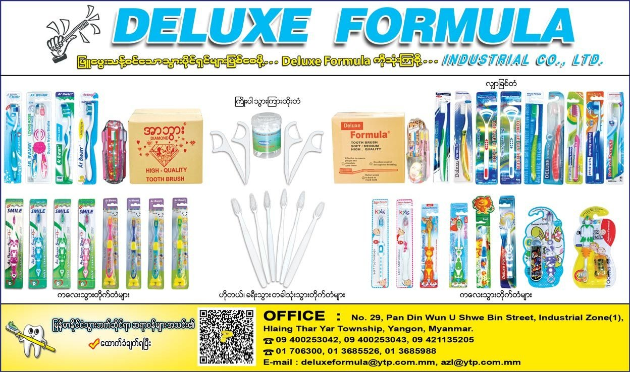 Deluxe-Formula-Industrial-Co-Ltd_Tooth-Brushes_(H)_1046.jpg