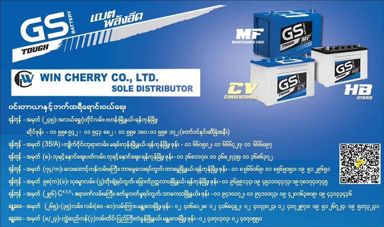 GS-Battery_Battery-&-Accessories-Sales_(B)_3957.jpg