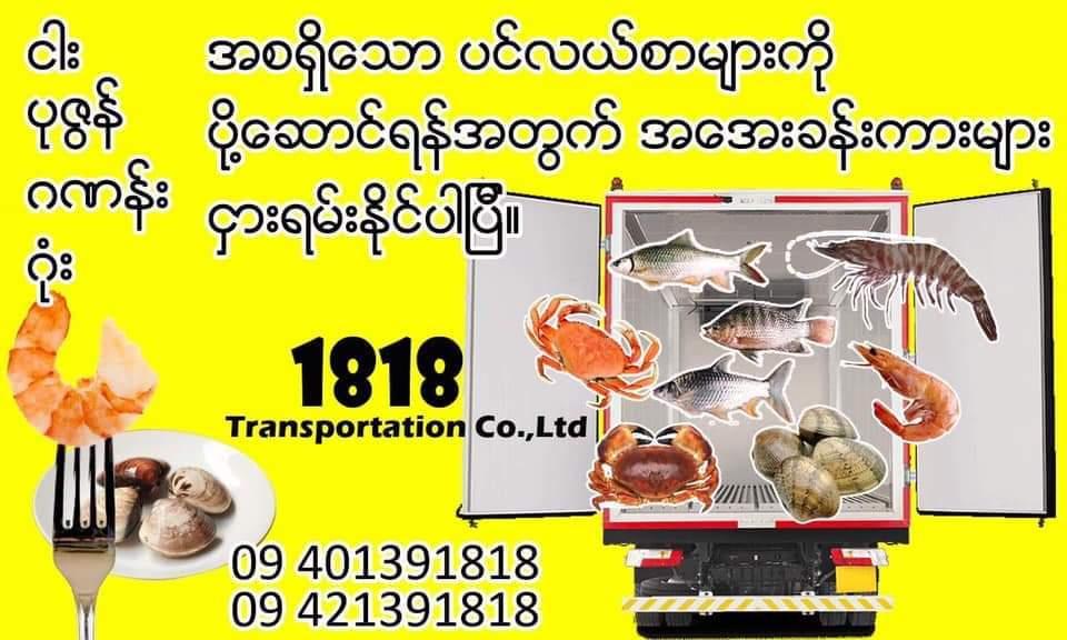 FB_IMG_1575520390552.jpg