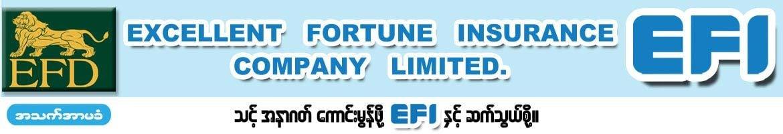 Excellent Fortune Insurance Co., Ltd. (EFI)
