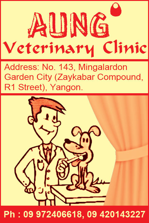 Aung_Veterinary-Clinics_(A)_4492.jpg